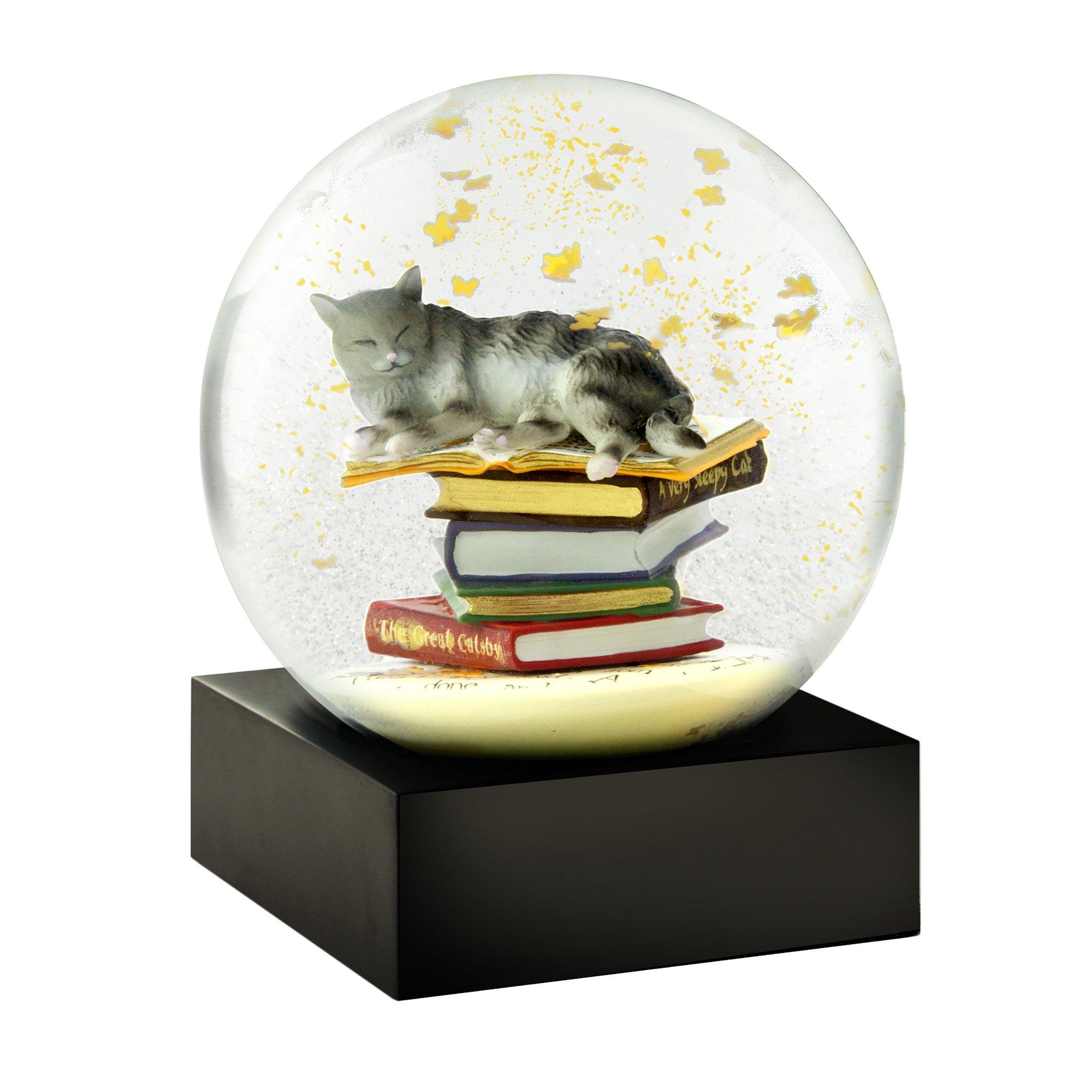 CoolSnowGlobes Cat on Books Snow Globe