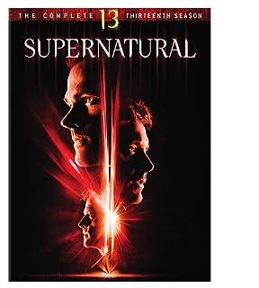 Book Cover: Supernatural: Season 13