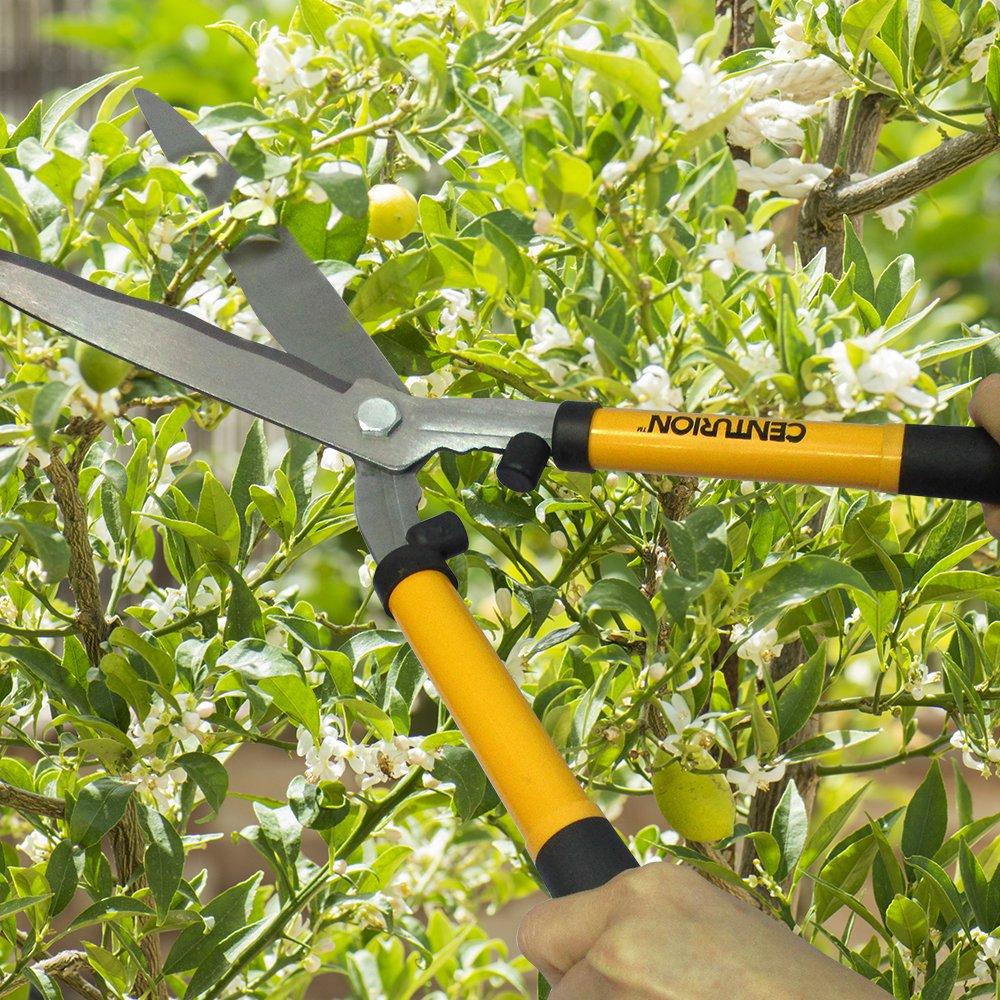 Centurion Garden and Outdoor Living 1222 Cutting Set Yellow