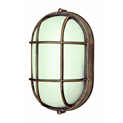 Trans Globe Lighting Trans Globe Imports 41005 RT Transitional One Light Bulkhead from Aria Collection in Bronze/Dark Finish, 4.00 inches, Rust - Wall Porch Lights - .com