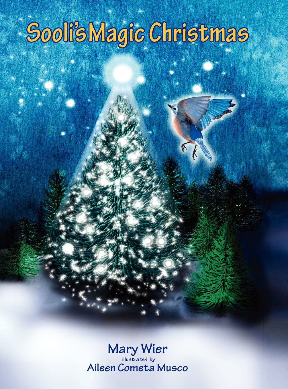 Download Sooli's Magic Christmas ebook