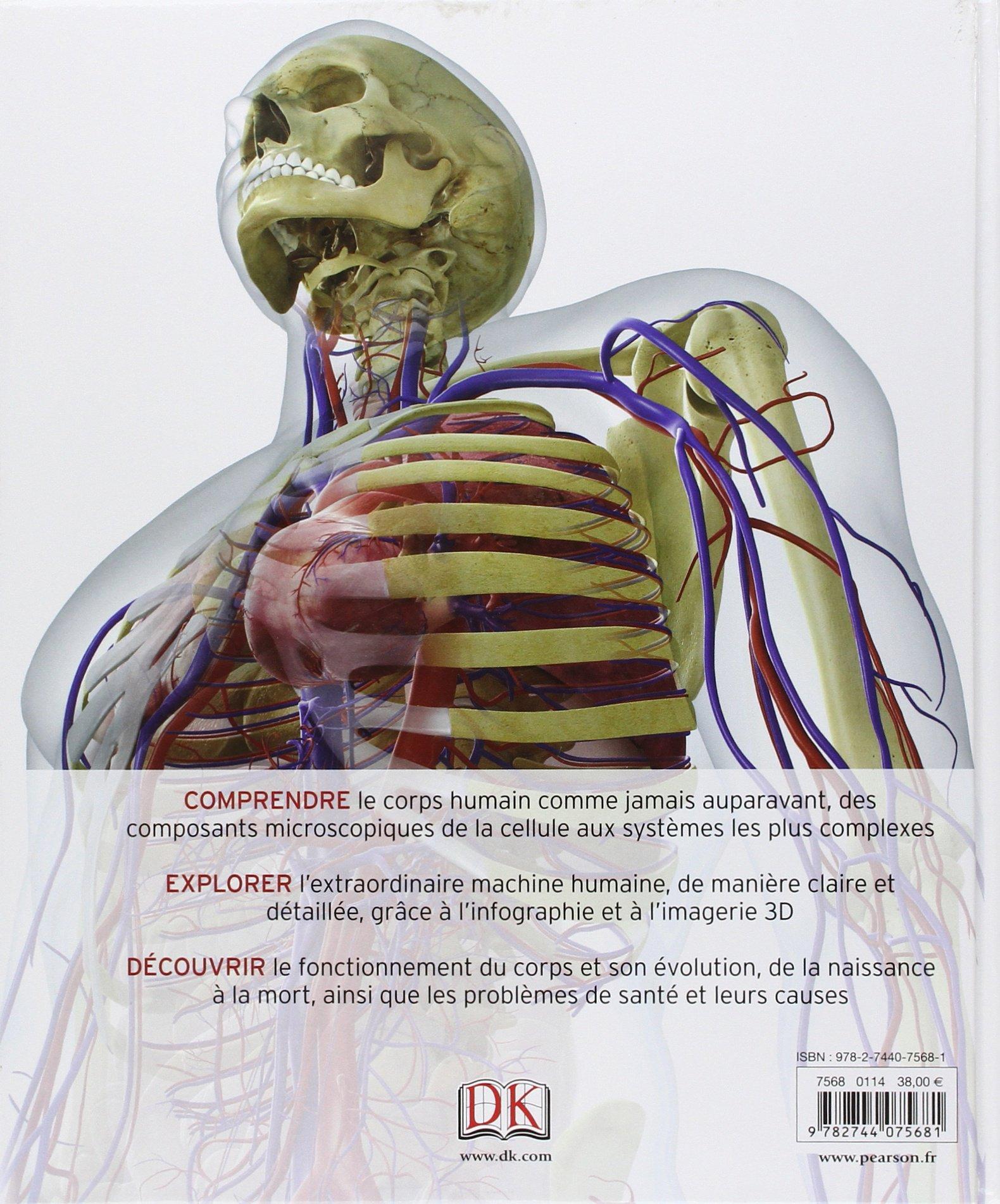 Ungewöhnlich Visuelle Anatomie 3d Bilder - Menschliche Anatomie ...