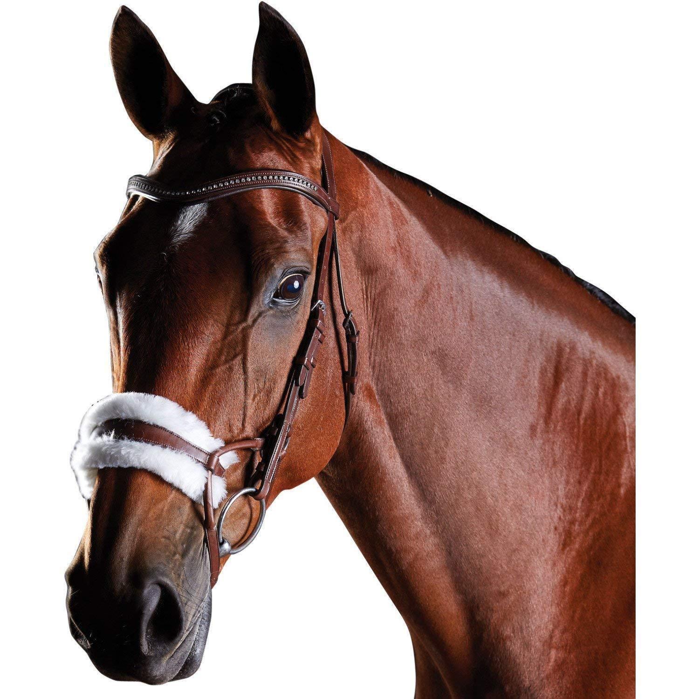 (カレッジエイト) Collegiate 馬用 Comfitec シープスキン レザー ブライドル 頭絡 馬具 乗馬 ホースライディング ウォームブラッド ブラウン B07KXD7HSW