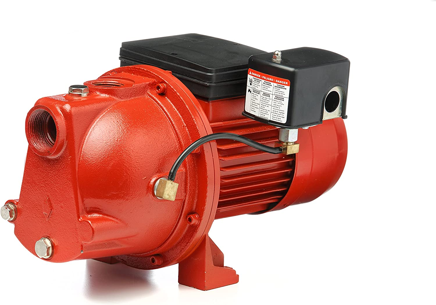Red Lion 97081001 Cast Iron 1-HP 17-GPM Shallow Well Jet Pump, Red