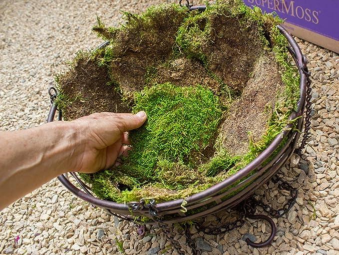 Super Moss Sheet Moss Green