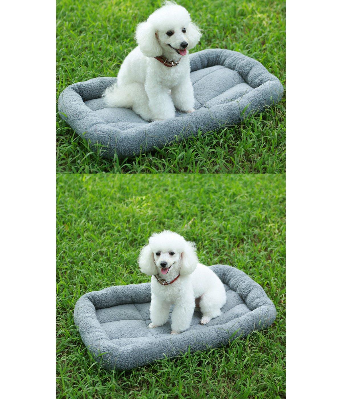 PETCUTE Cuccia per Cani Cuscino Lavabile Cuccia per Gatti Caldo Letto Tappetino Accogliente Cuscino Materasso per Animali