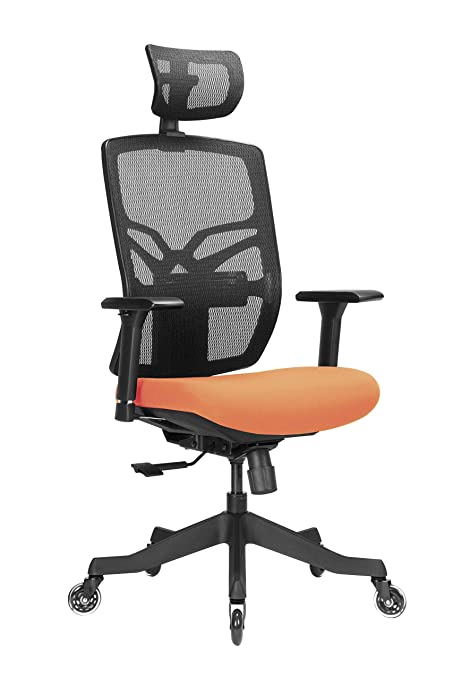 Magnificent Ergonomic Office Chair With Lumbar Support And Rollerblade Wheel Adjustable Arm Rest And Seat Depth And Backrest Height High Back Desk Chair With Download Free Architecture Designs Oxytwazosbritishbridgeorg