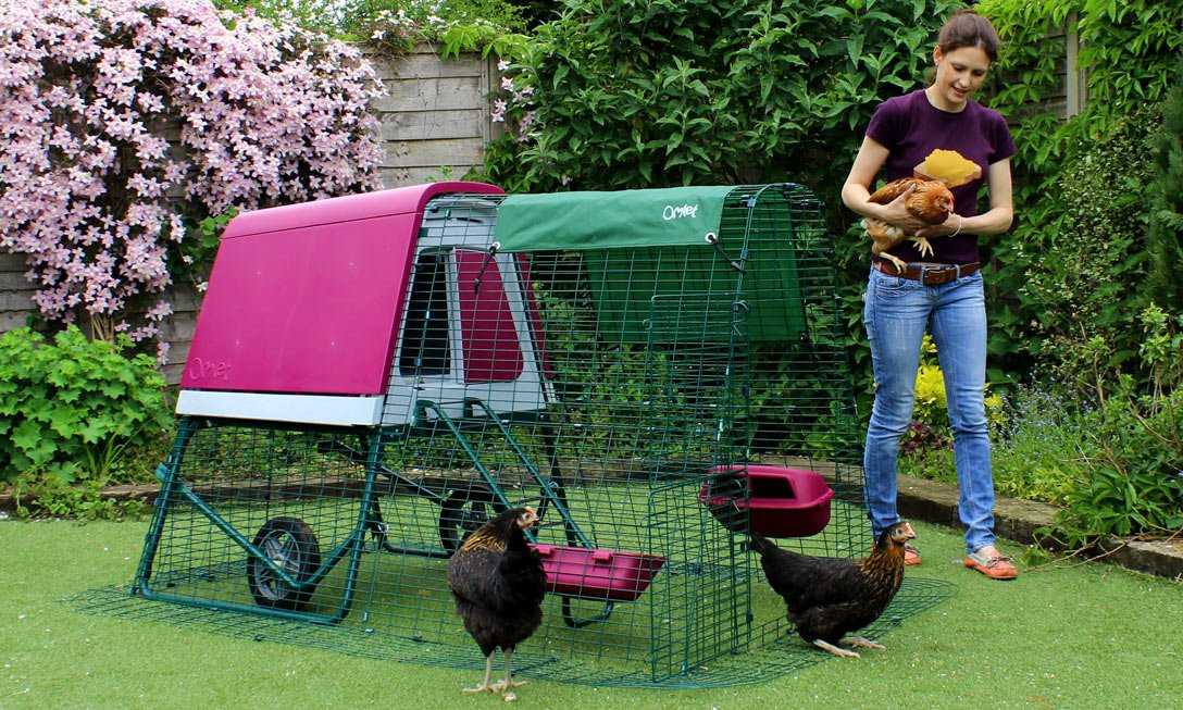 eglu chicken coop reviews