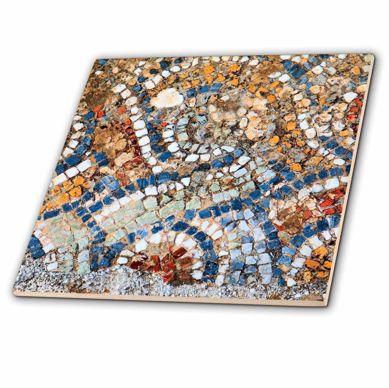 3dRose Danita Delimont - Artwork - Turkey, Izmir, Selcuk, ancient city Ephesus. Mosaic floors. - 8 Inch Glass Tile (ct_277028_7)