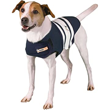 top selling Thunder Shirt Rugby