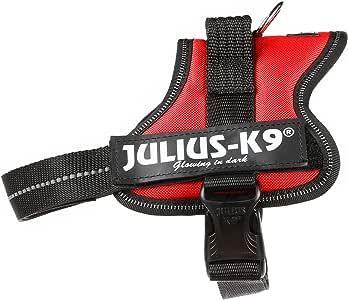 Julius-K9 Mini, 51-67 cm, Rojo: Amazon.es: Productos para mascotas