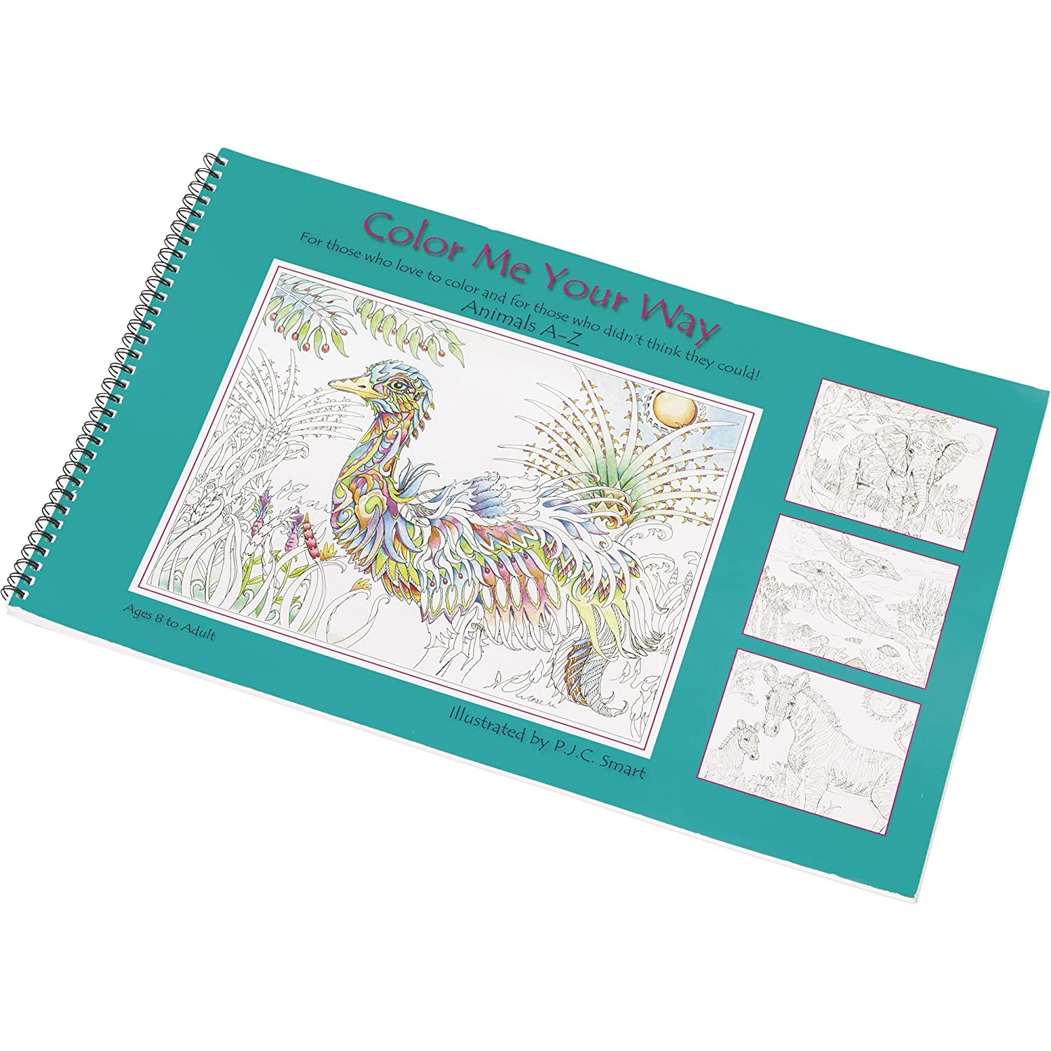 "Amazon.com: ""Color Me Your Way"" Coloring Book 5-Pack — 130 Animal ..."