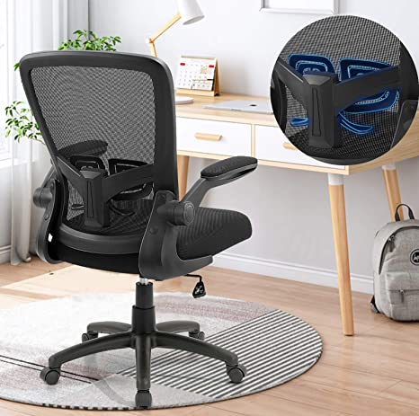 ZLHECTO Ergonomic Desk Chair