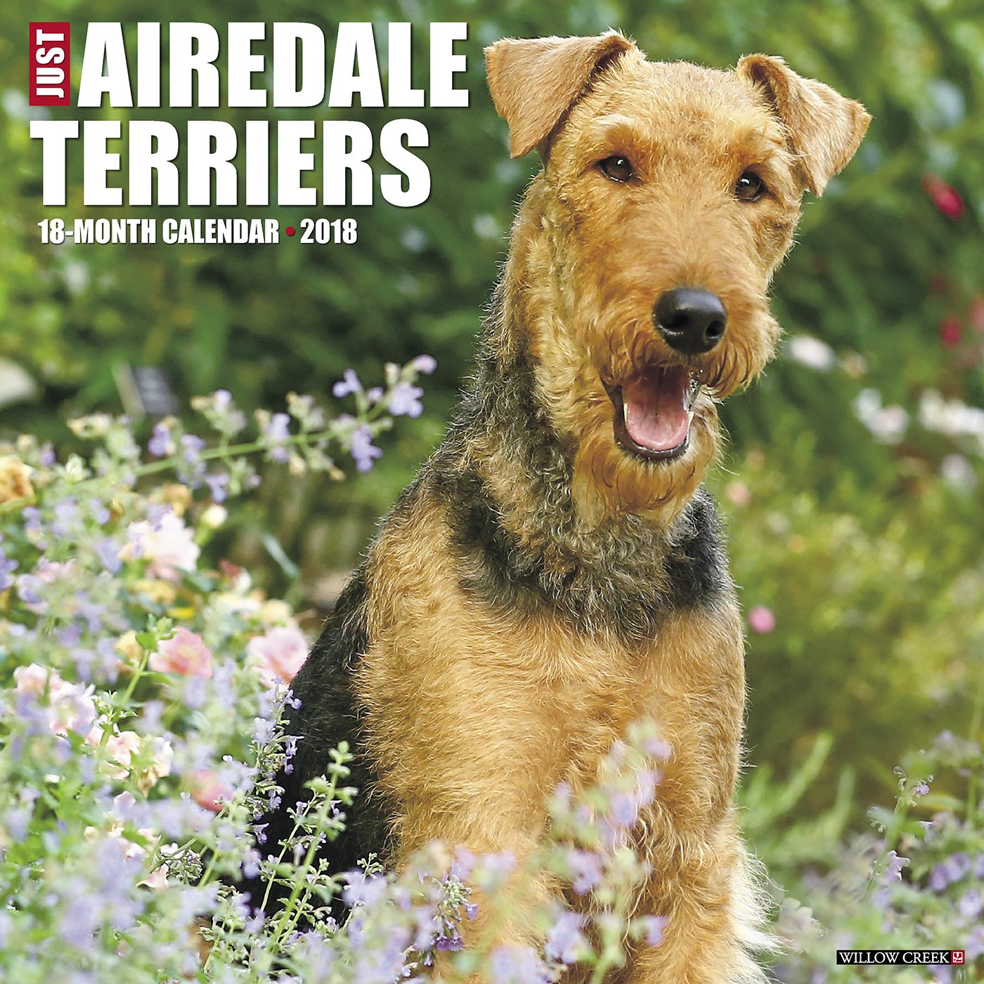 Download Just Airedale Terriers 2018 Calendar PDF
