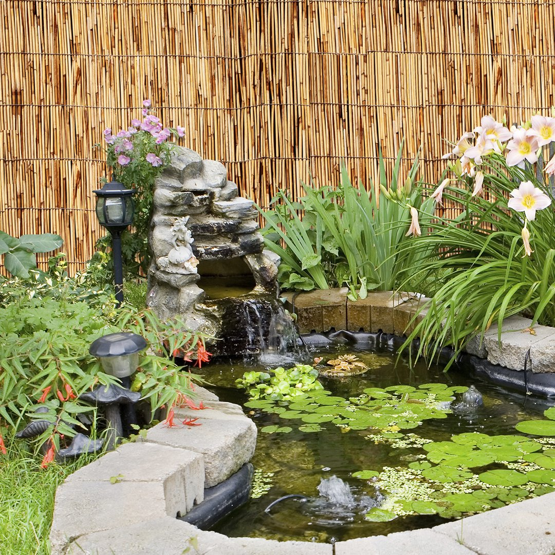 Amazon.com: Lewis Hyman Garden Path 0406166 Natural Polished And Peeled  Reed Fencing, 6 By 16 Foot High: Home U0026 Kitchen