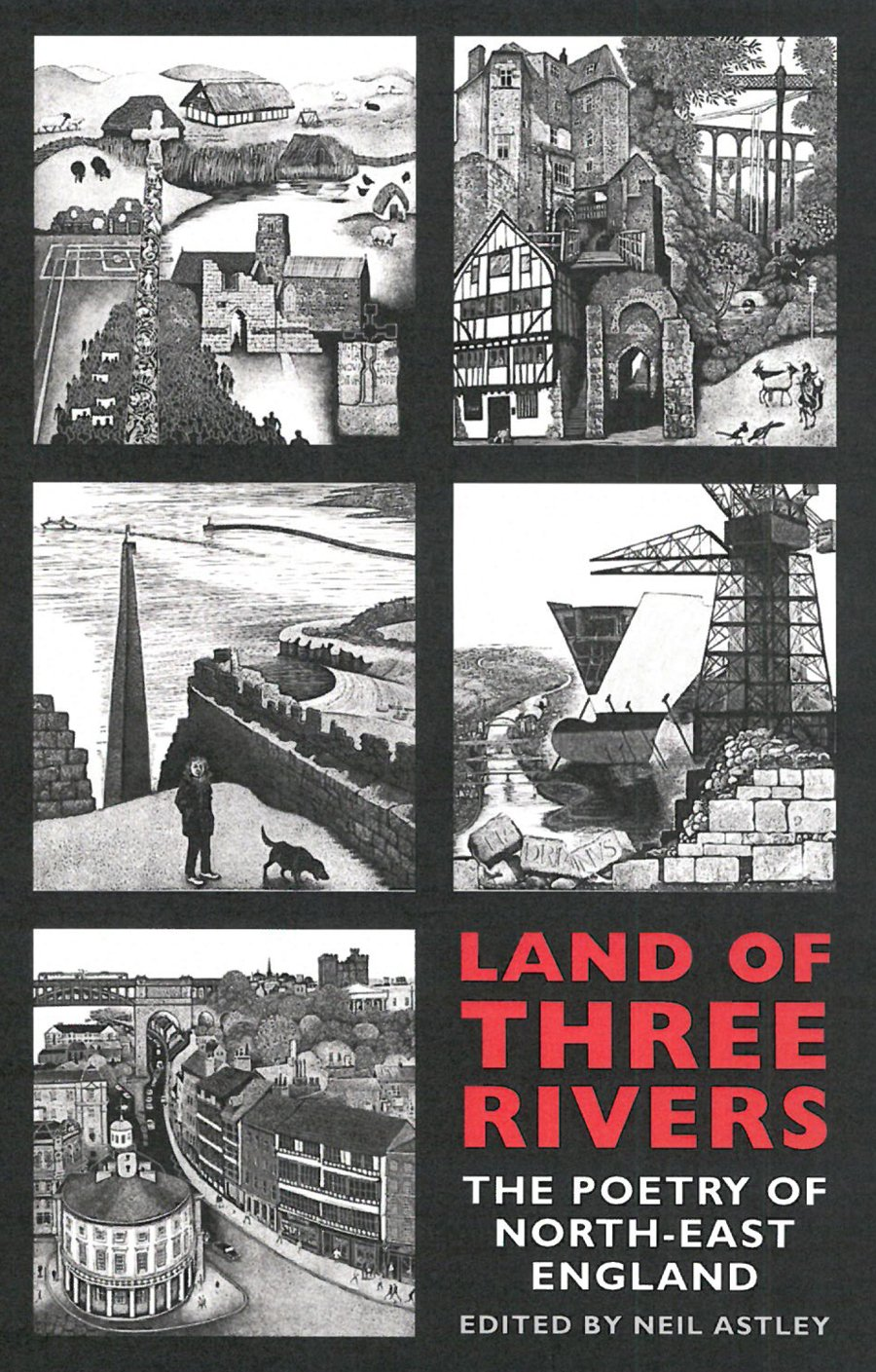 Download Land of Three Rivers: The Poetry of North-East England ebook
