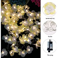 Yinuo Light Flower Curtain String 100 LED Lights & 8 Lighting Modes