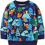 Toddler Boy's Cotton Crewneck Pullover Sweatshirt,Cute Long Sleeve Cute Top Shirt Outfit