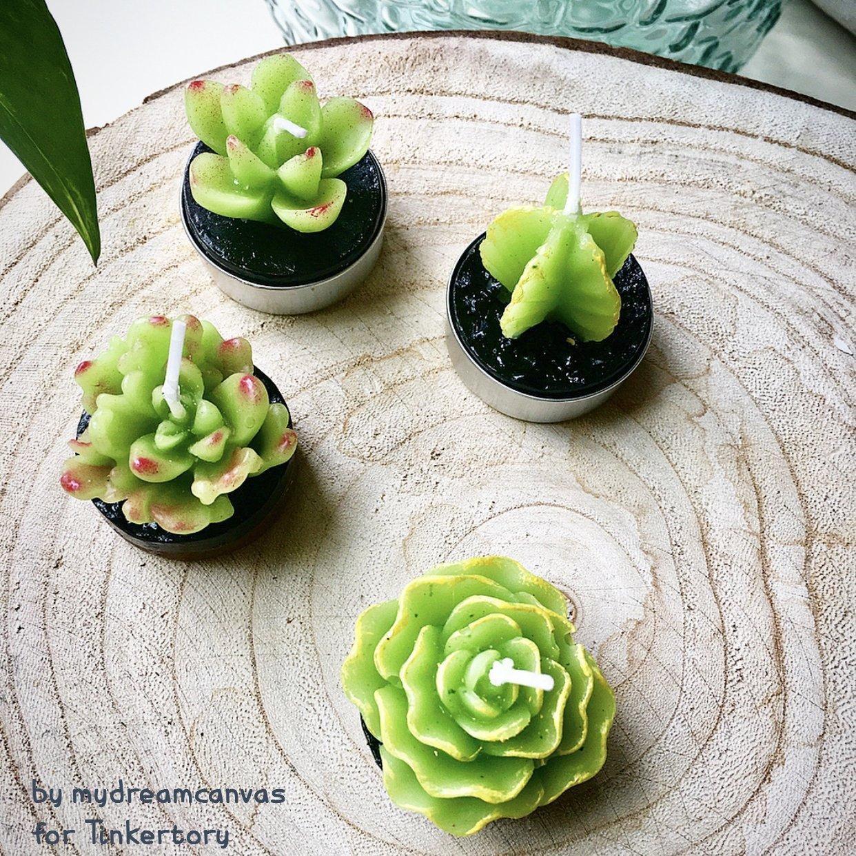 cactus velas