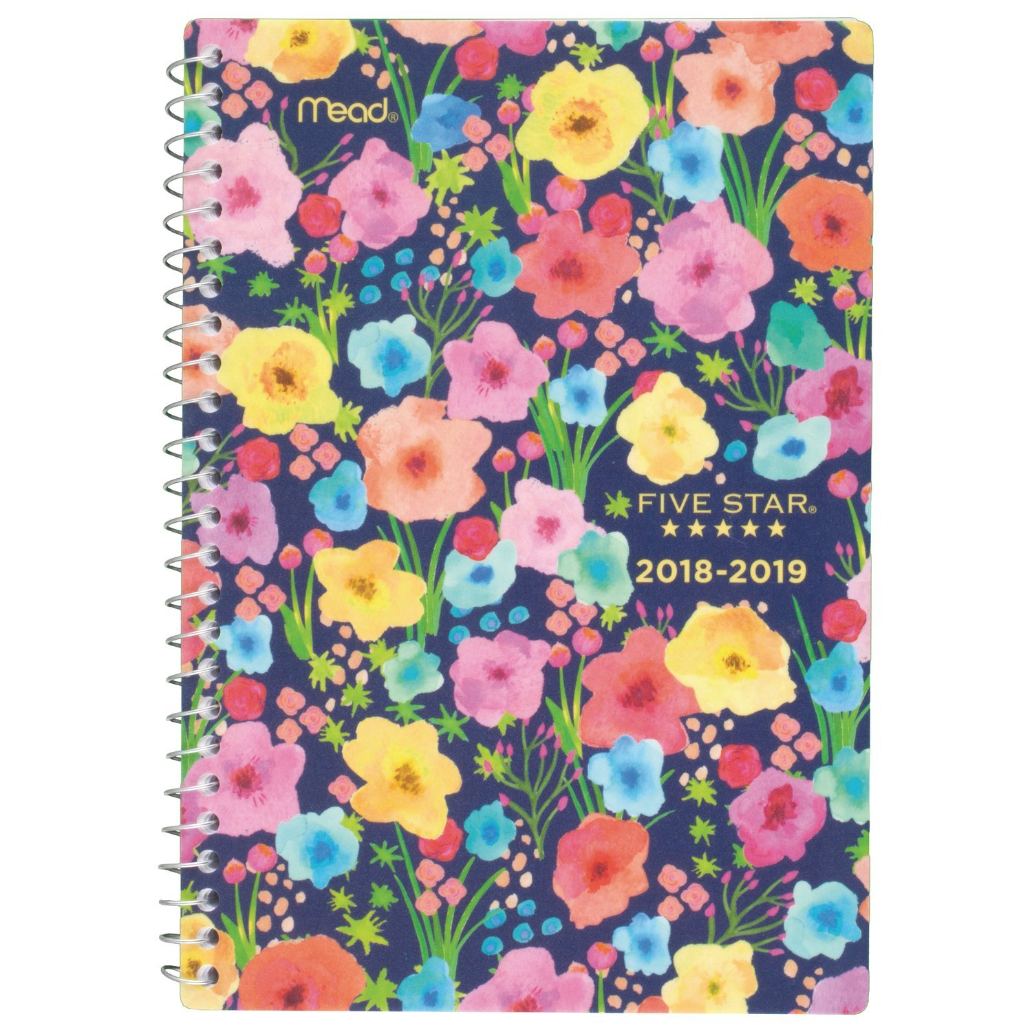 Small 5-1//2 Five Star Aug 2018 Jul 2019 Academic Year Weekly Monthly Planner