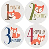 Fox Monthly Baby Stickers, Woodland, Baby Gift, Milestone Stickers, Baby Boy