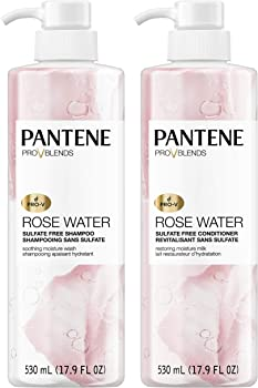 2-Pack Pantene Shampoo and Sulfate Free Conditioner Kit (17.9 fl oz)