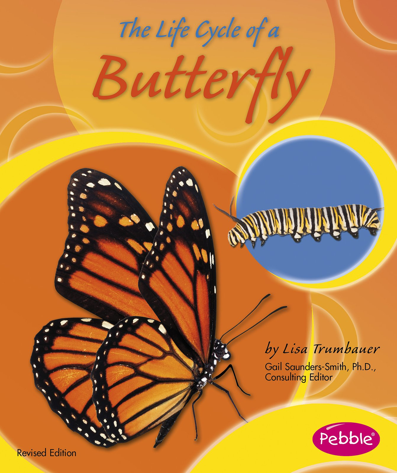 The Life Cycle Of A Butterfly (life Cycles): Lisa Trumbauer: 9781515742289:  Amazon: Books