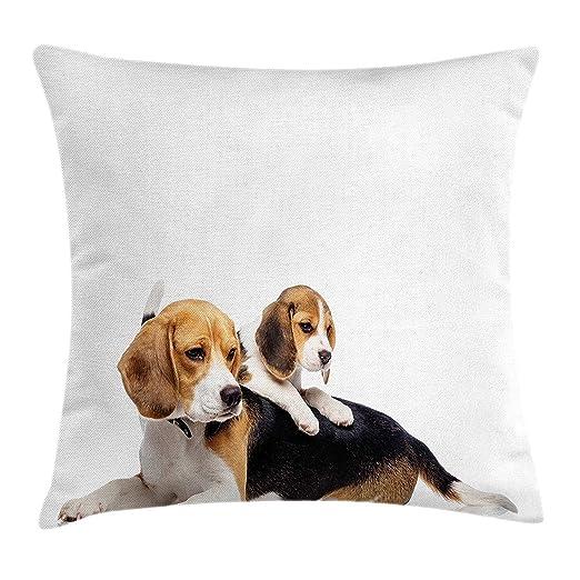 Dutch Beagle Funda de cojín, Lindo Familiar con mamá y bebé ...