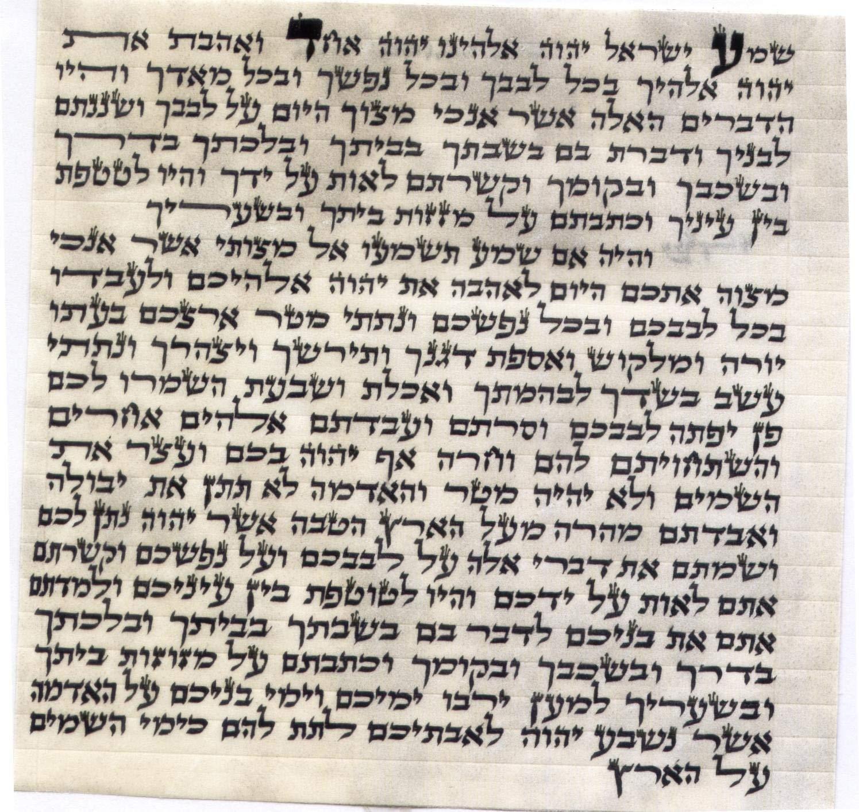 ProShofar Kosher Mezuzah Scroll from Israel - Klaf Mezuza Parchment (2.8'') by ProShofar