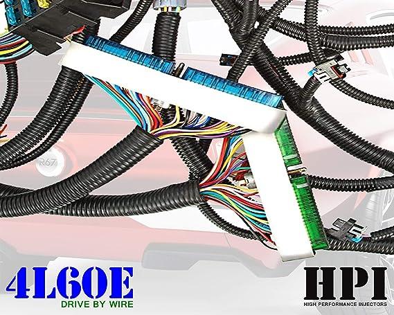 Amazon.com: HPI 03-07 LS Vortec Standalone Harness 4.8 5.3 6.0 (DRIVE BY  WIRE) (GREEN/BLUE PCM) & MULTEC/DELPHI, FUEL INJECTOR CONNECTORS (4L60E  DBW): AutomotiveAmazon.com