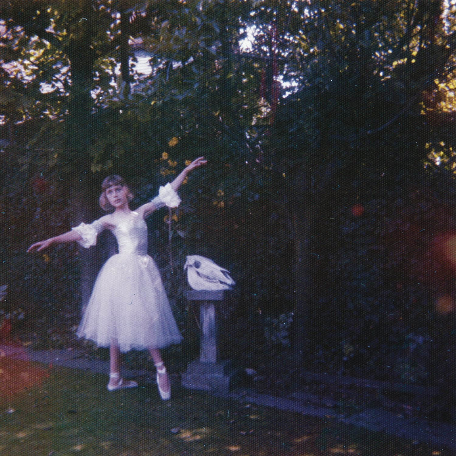 CD : Wolf Alice - Visions Of A Life (CD)