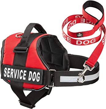 Industrial Service Dog Vest + Leash