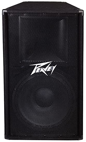 Amazon.com: Peavey PV115 2-Way 15 Inch Speaker Cabinet: Musical ...