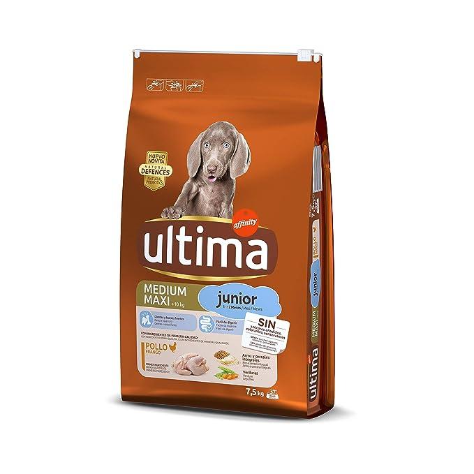 Ultima Pienso para Perros Medium Maxi Junior con Pollo - 7.5 kg ...