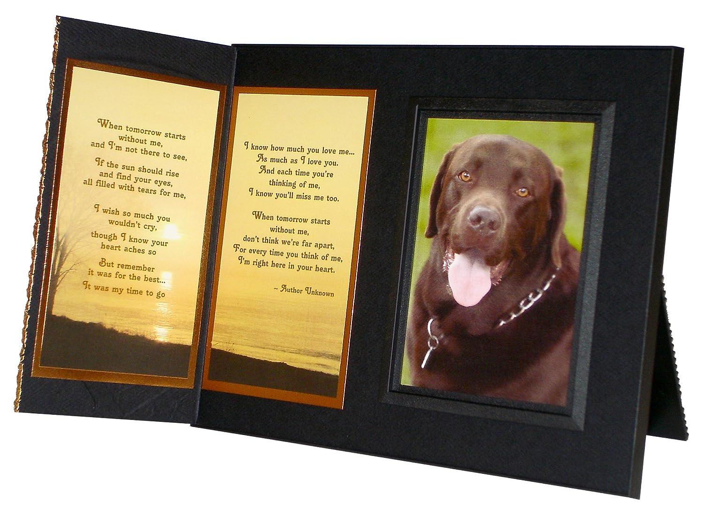 Amazon.com: Pet Lover Remembrance Gift, \