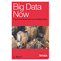 Big Data Now: Current Perspectives from O'Reilly Radar (English Edition)