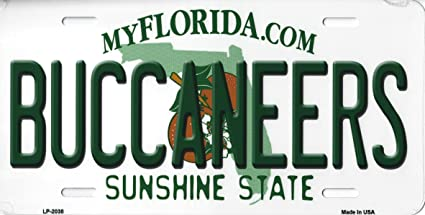 FLORIDA SUNSHINE STATE BACKGROUND METAL NOVELTY LICENSE PLATE TAG