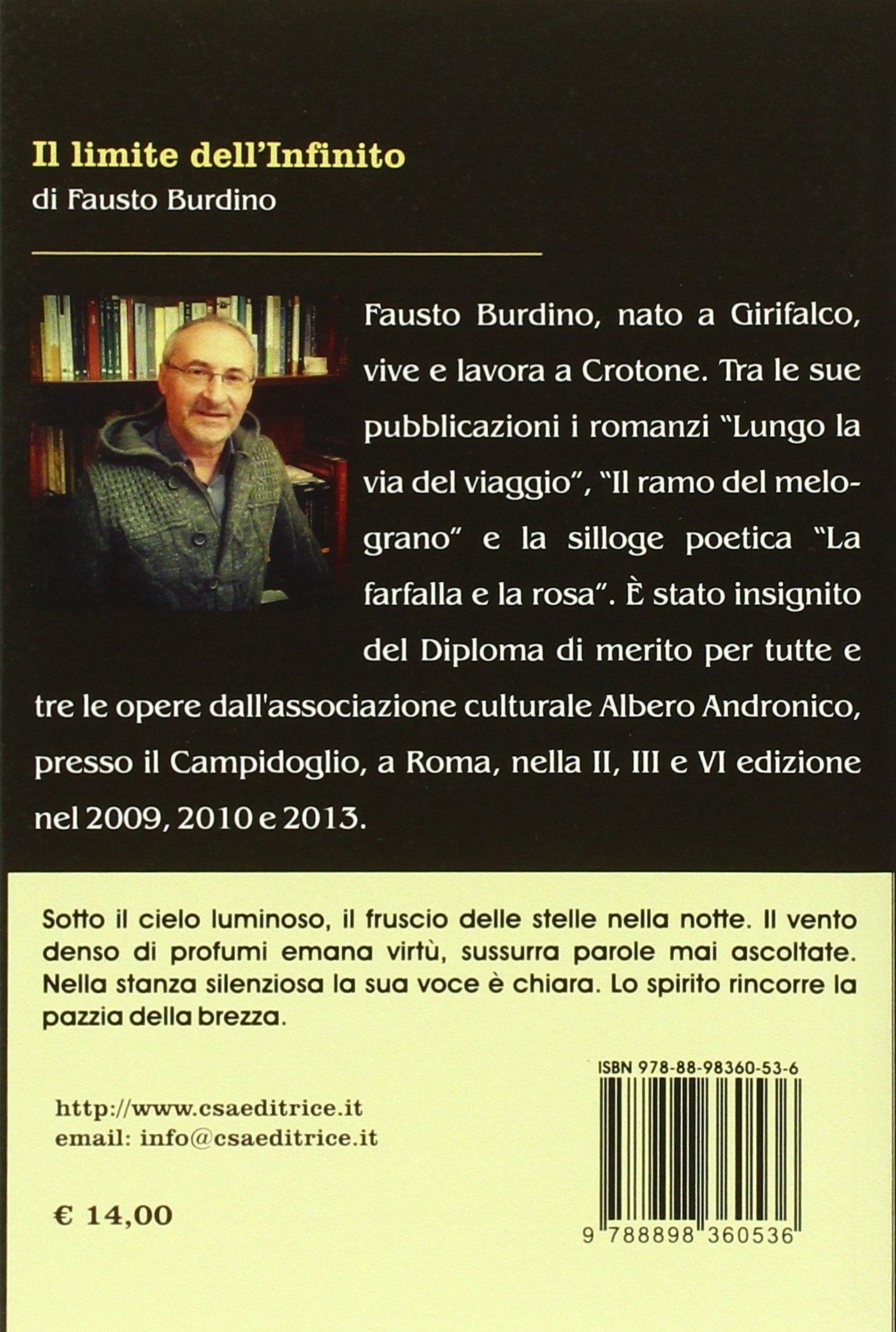 8af7aa7331c Il limite dell infinito  Amazon.it  Fausto Burdino  Libri