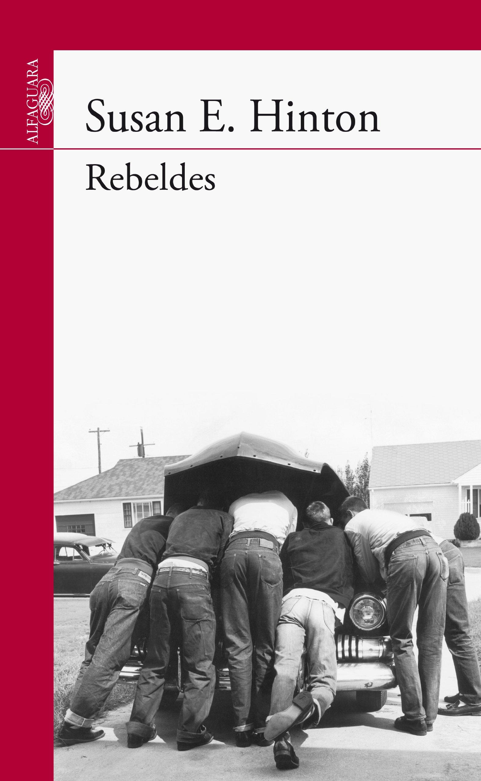 Resultado de imagen de rebeldes susan e hinton