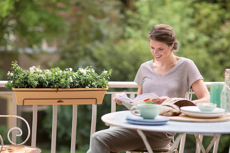 Cherry L 25.7 x W 69.2 x H 16.7 cm Outdoor /& Balcony Elho Green Basics Trough Allin1 70 Planter