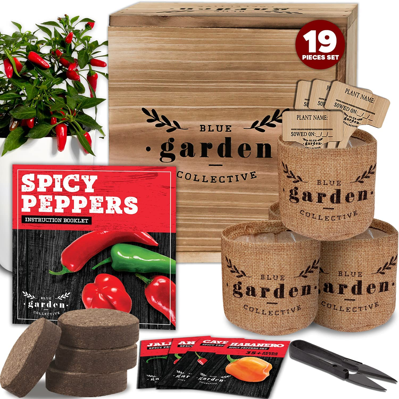 Hot Pepper Seeds for Planting - Garden Starter Kit, Indoor Garden Kit, Indoor Herb Garden for Cayenne Pepper Seeds, Gardening Gifts for Women, Gardening Gifts for Men, Vegetable Seeds for Planting