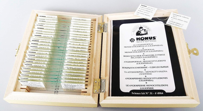 Pathological Human Tissue 2 Pack of 10 Konus Preparation Set