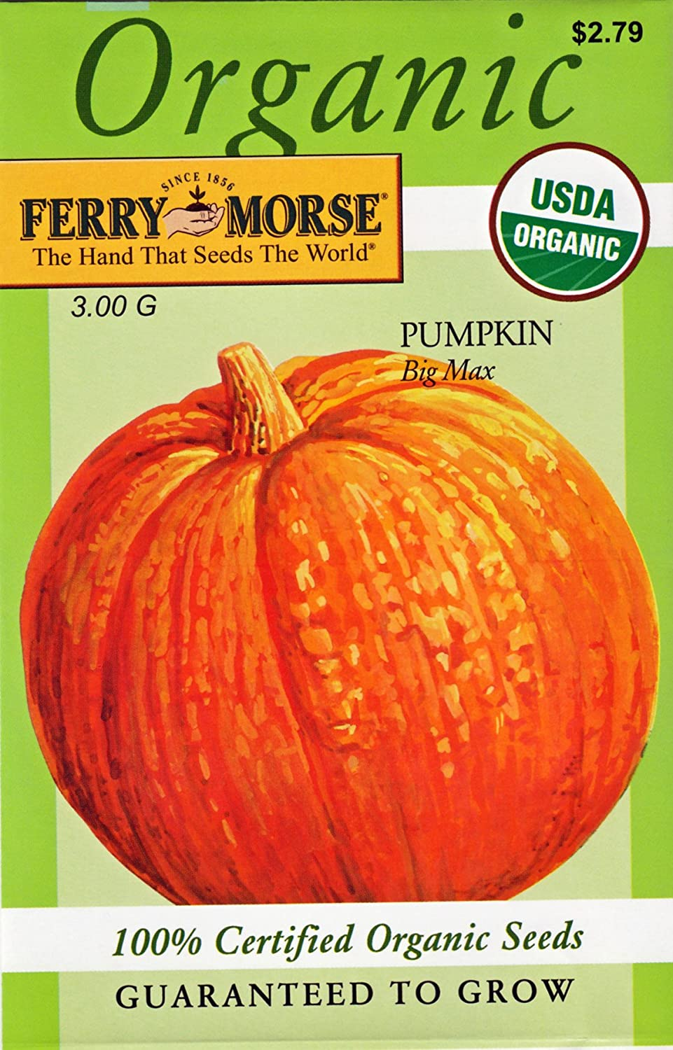 Ferry Morse Organic Big Max Pumpkin Seeds