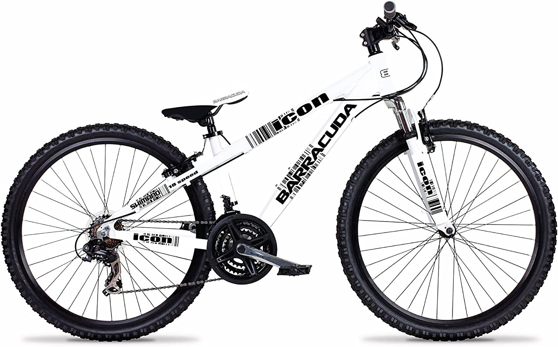 Barracuda Boys Icon - Bicicleta para niño, tamaño 24 UK, Color ...