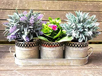 Amazon.co.uk & Antique French Vintage Style Set of 3 Metal Garden Flower Pots Planters \u0026 Tray