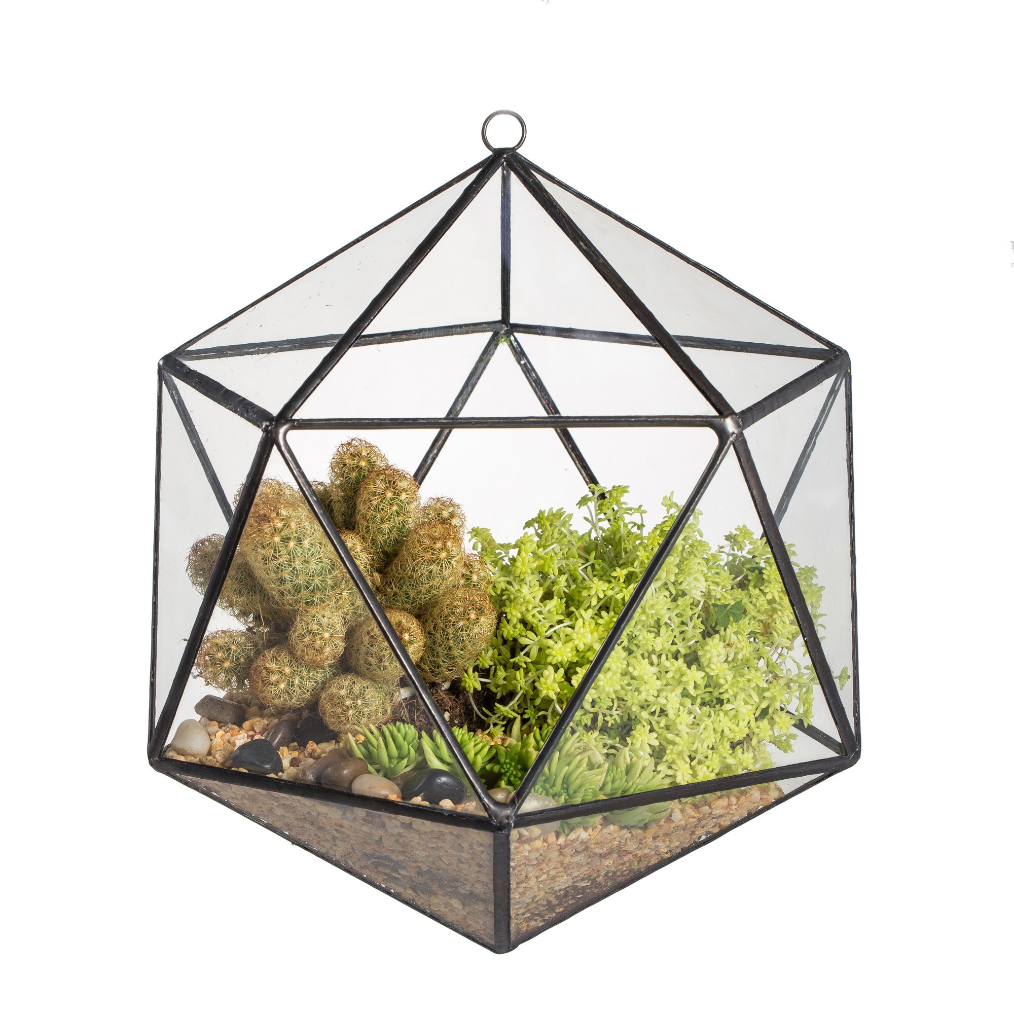 NCYP Wall Hanging Geometric Terrarium Balcony Tabletop Windowsill Decor Glass Flower Pot Modern Large Indoor Garden Micro Landscape Icosahedron Planter Container for Succulent Air Plant Fern