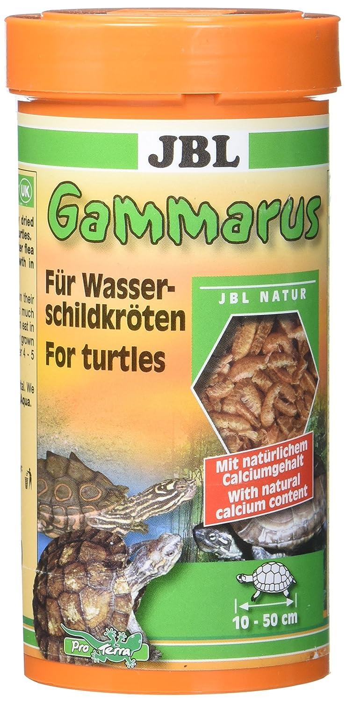 JBL cleaned BACHMANN flohk rebse para tortugas, Gammarus 7032200-1