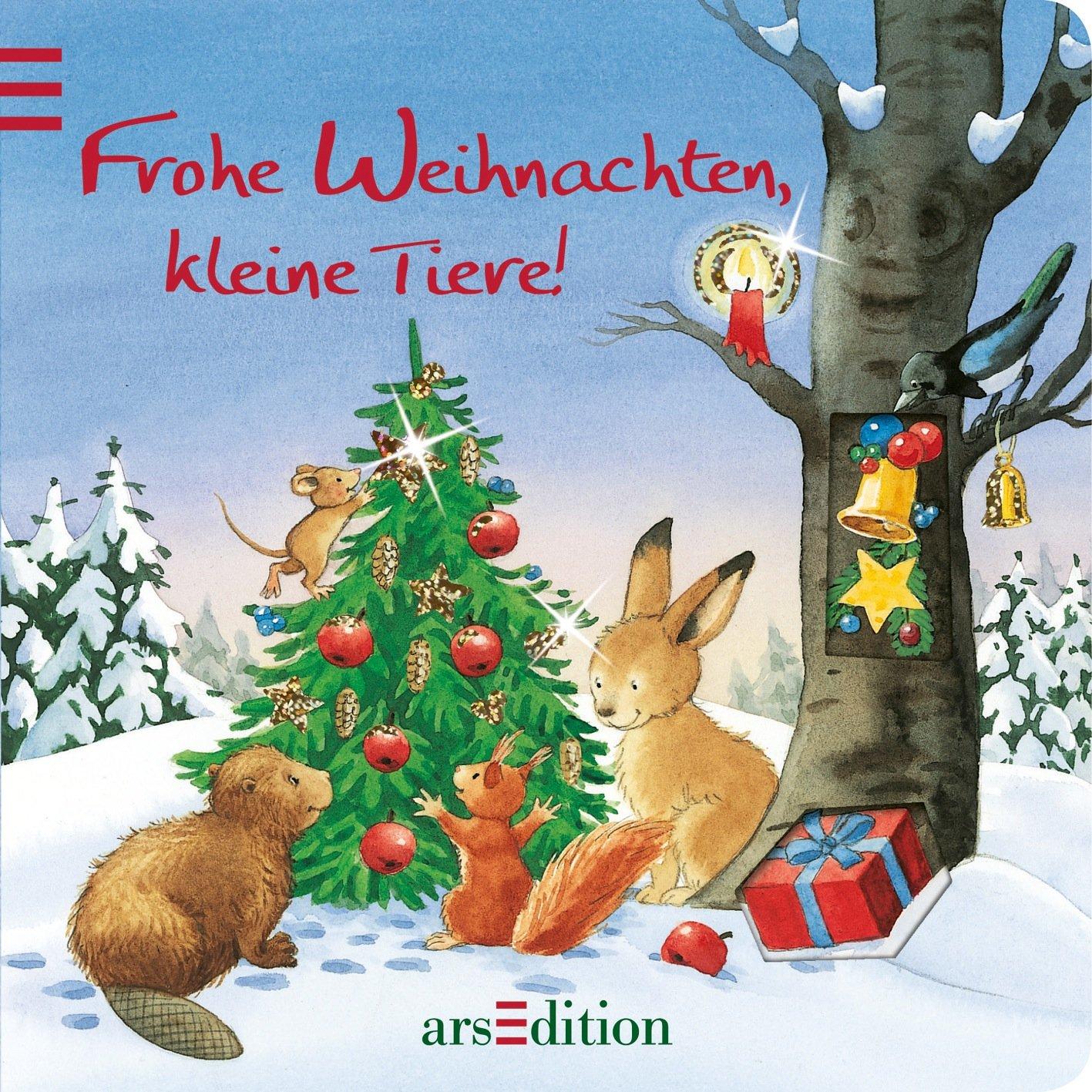 Kinderbücher Weihnachten.Frohe Weihnachten Kleine Tiere Amazon De Sabine Cuno Bücher