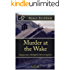 Murder at the Wake: a gripping crime mystery with a sinister twist (Detective Inspector Skelgill Investigates Book 7)