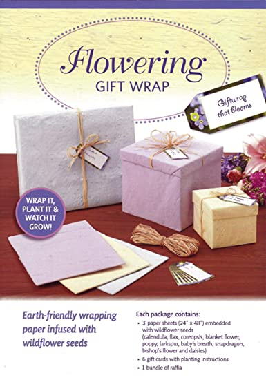 Amazon Com Flowering Gift Wrap Health Personal Care